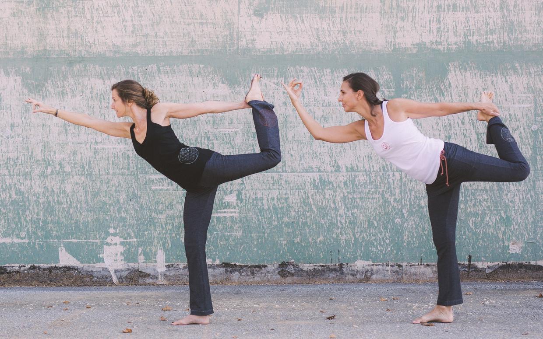 narayana Yoga